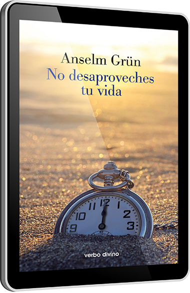 No desaproveches tu vida - EPUB